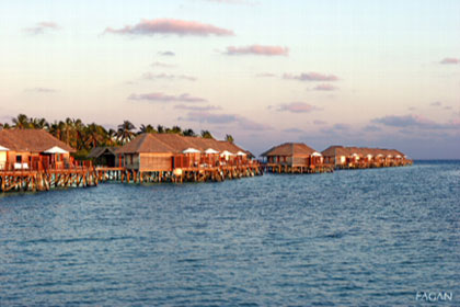 Most of the Tourists Stay at Resorts  Maldives Resort